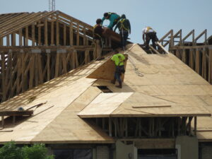 Roofers installing plywood roof sheathing.