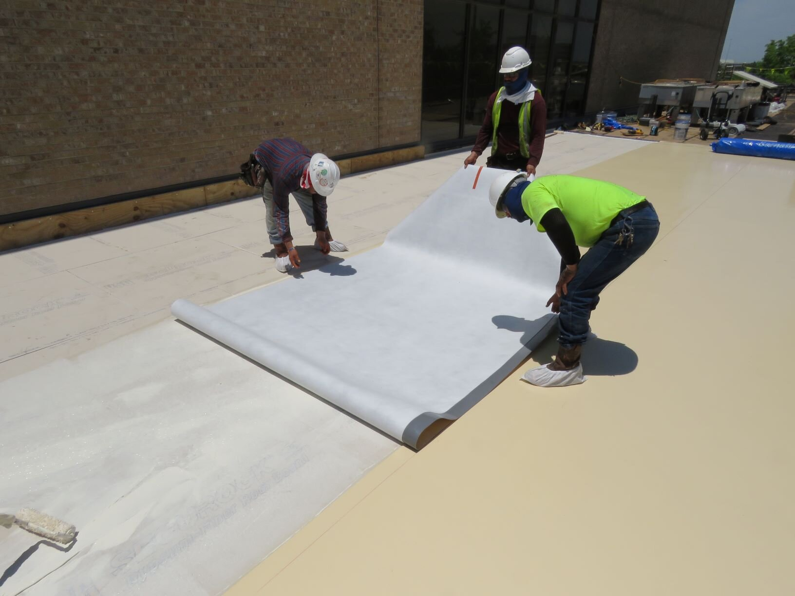 Installing a sheet of fleece-back PVC roof membrane in adhesive.