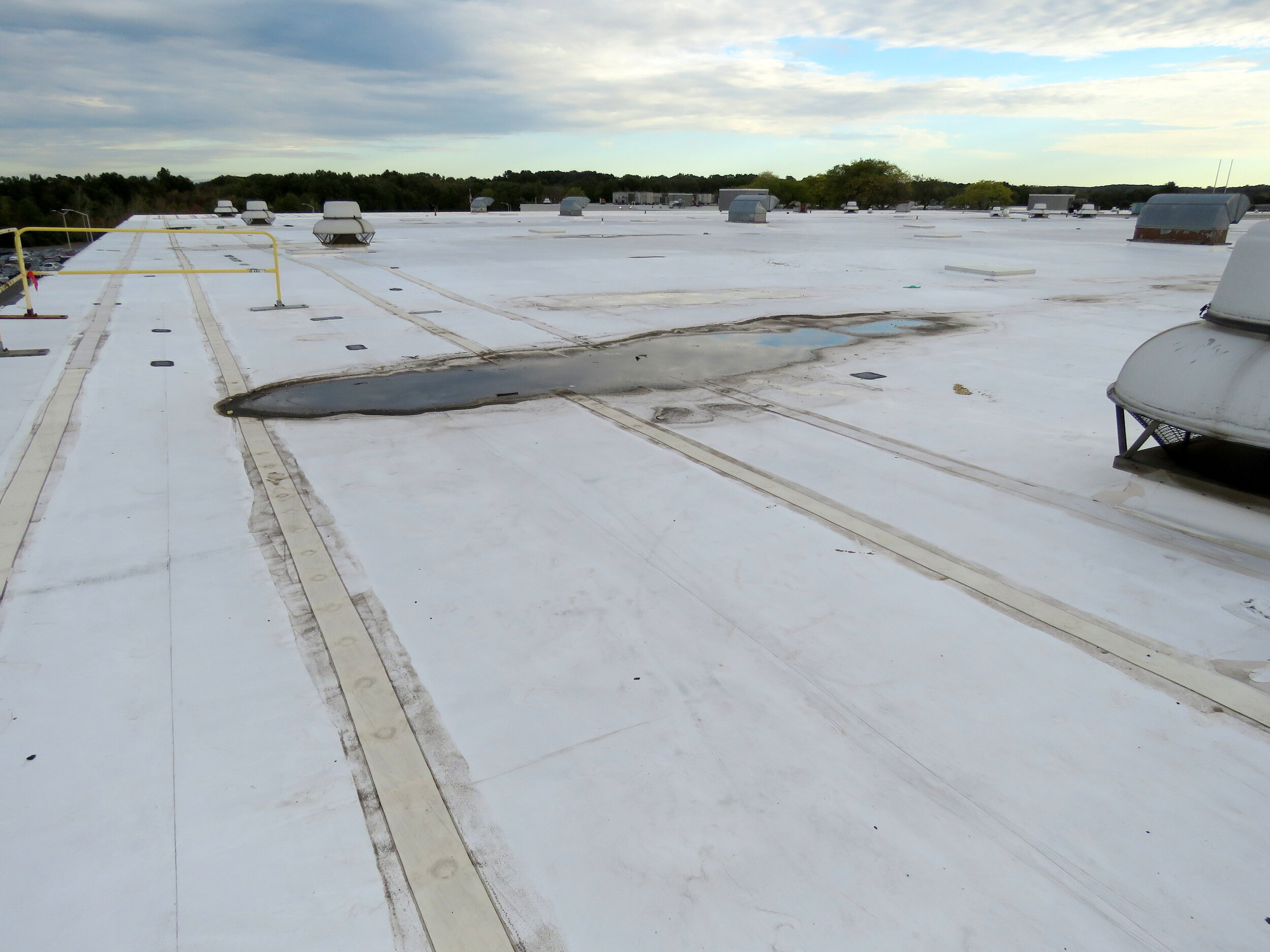 Chronic ponding water on this roof has contributed to permanent deck deflection and discoloration of the white roof membrane.